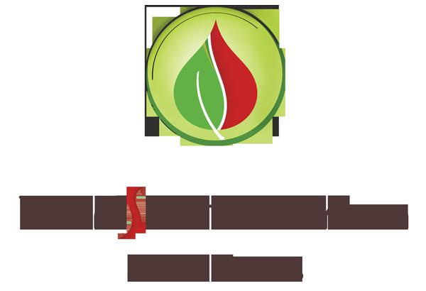 Transfer Pharma Solutions